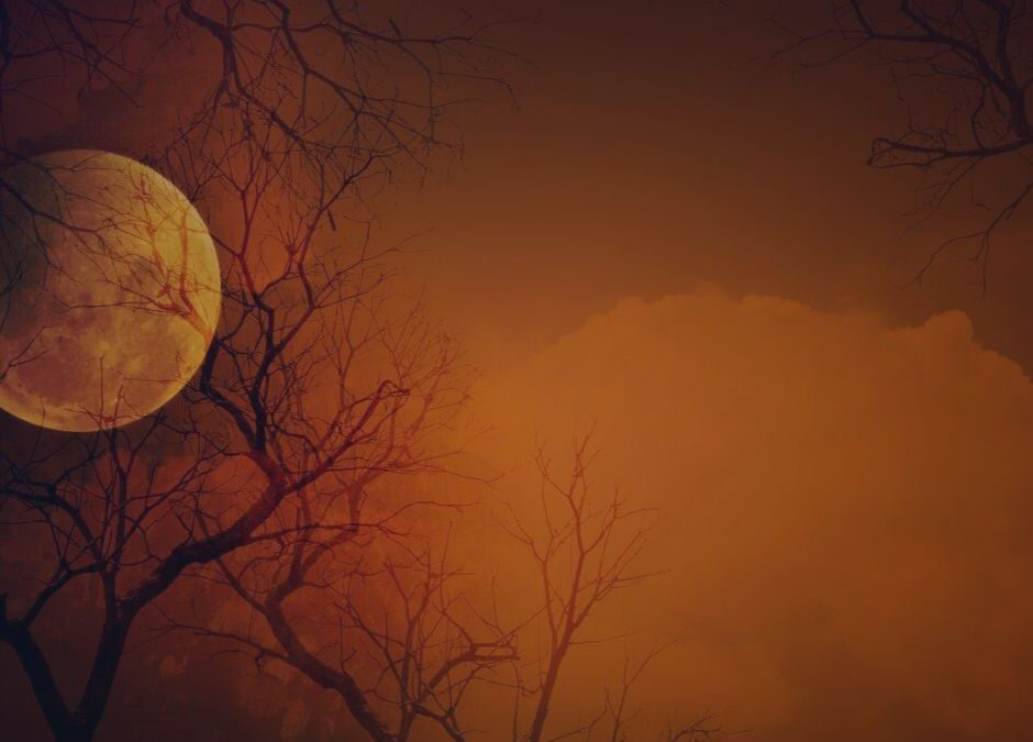 The Full Moon & Your Emotions