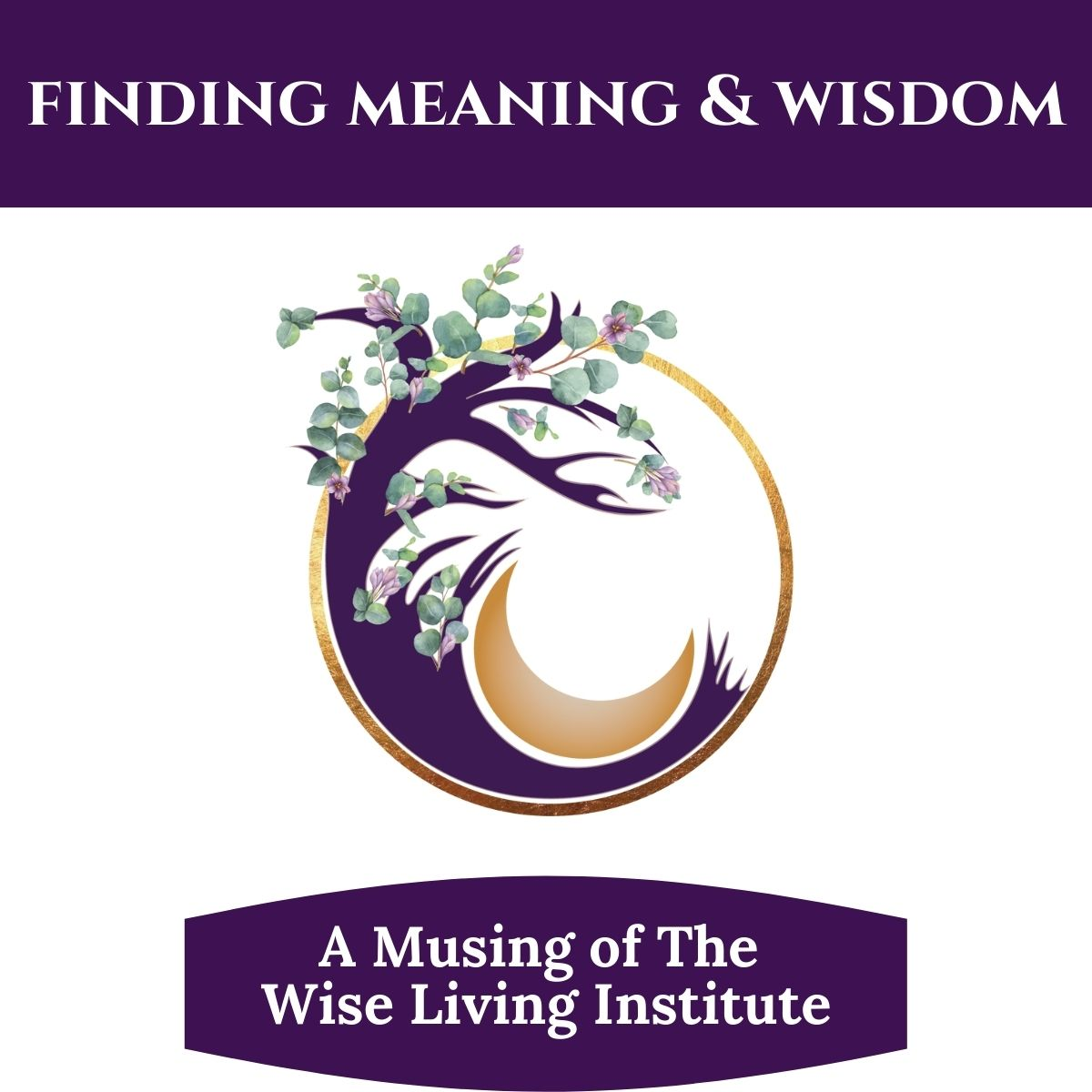 Finding Meaning & Wisdom